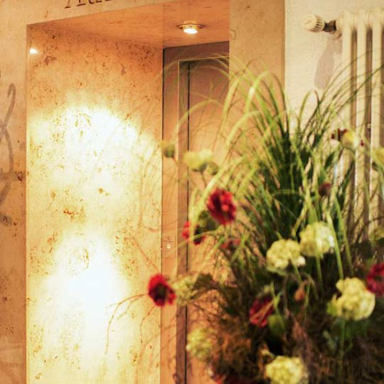http://www.hotelwiendl.de/wp-content/uploads/2016/09/Aufzug-540x540.jpg